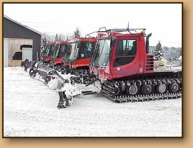 Line of Groomers